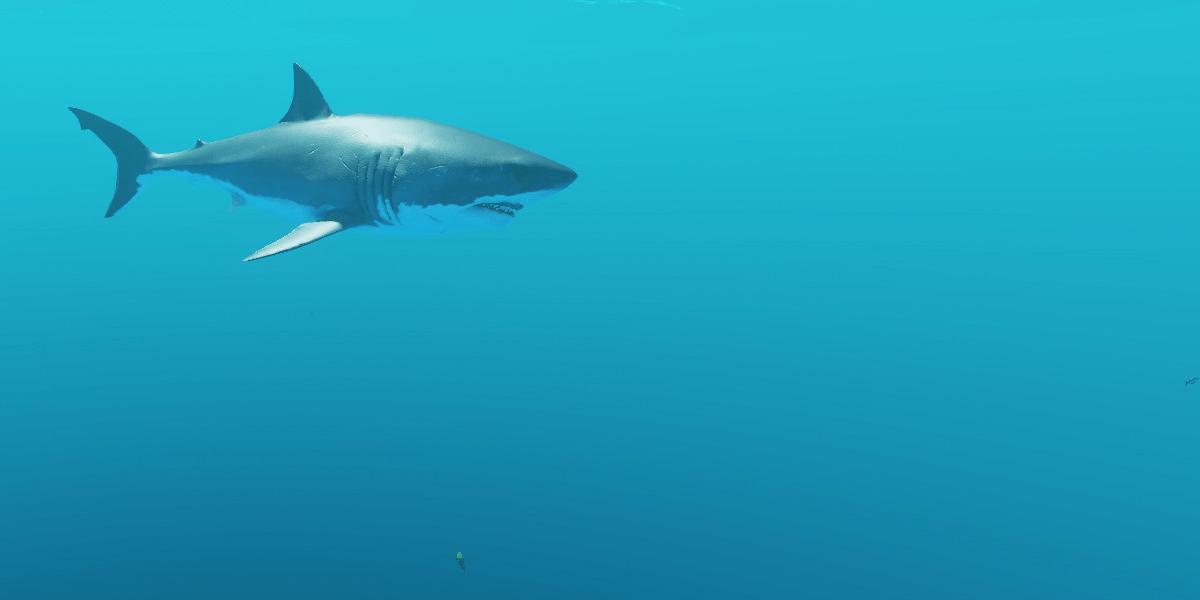Stranded Deep Header