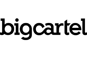 BigCartel site preview