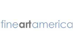 Fine Art America site preview
